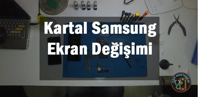 Kartal Samsung Ekran Değişimi