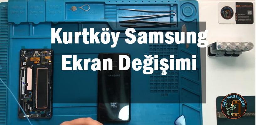 Kurtköy Samsung Ekran Değişimi