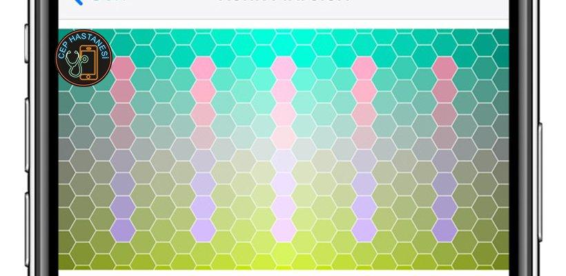 iPhone Ekran Renk Solması