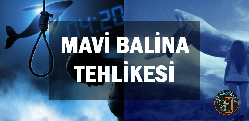 Mavi Balina Tehlikesi